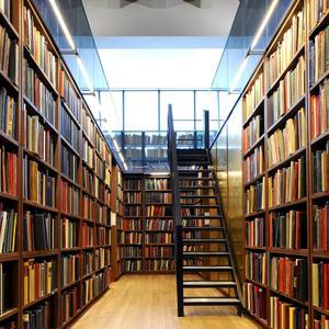 Библиотеки Шебалино